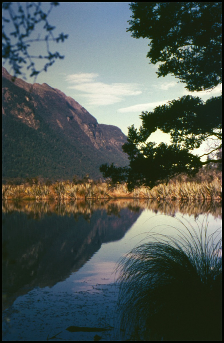 Photo of a mountain on the left, and part of the tree on the right. It is reflected in the water in front of it.