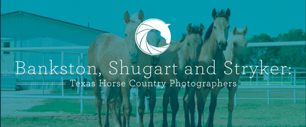 Banner in color showing 4 horses from the front. Behind them is a white building. A white graphic design symbol is overlayed and the exhibit title, Bankston, Shugart, and Stryker The Horse Contry Photographers on it in big white letters.